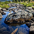 Alpine Stream Beartooth Mounain Range Print by Edward Fielding