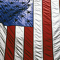 American flag Print by Tony Cordoza
