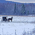 Amish Carriage Print by Jack Zievis