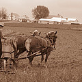 Amish Farmer Poster by Janet Pugh