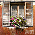 An Old French Window Poster by Olivier Le Queinec