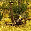AN OLD GRASS CUTTER IN LINCOLN CITY NEW MEXICO Poster by Jeff  Swan