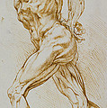 Anatomical study Poster by Rubens