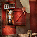 Animal - Horse - Calvins house  Poster by Mike Savad