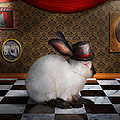 Animal - The Rabbit Poster by Mike Savad