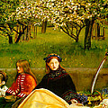 Apple Blossoms Poster by John Everette Millais