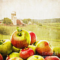 Apple Picking Time Poster by Edward Fielding