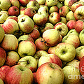 Apples Print by Olivier Le Queinec