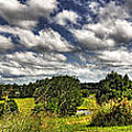 Australian Countryside - Floating Clouds Collage Poster by Kaye Menner