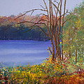 Autumn at the Lake Poster by David Patterson