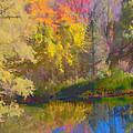 Autumn Beside the Pond Print by Don Schwartz
