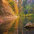 Autumn Bliss Poster by Peter Coskun