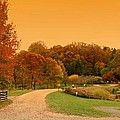 Autumn In The Park - Holmdel Park Poster by Angie Tirado