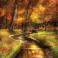 Autumn - Landscape - By a little bridge  Poster by Mike Savad