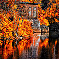 Autumn Reflections  Print by Bob Orsillo