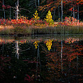 Autumn Reflections - Red Eagle Pond Print by Thomas Schoeller