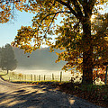 Autumn Road Print by Bill  Wakeley