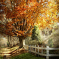 Autumn - Westfield NJ - I love autumn Print by Mike Savad