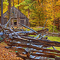 Autumn Wooden Fence Print by Joann Vitali
