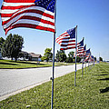 Avenue of the Flags Print by Cricket Hackmann