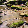 Babbling Brook Print by Frozen in Time Fine Art Photography