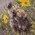 Baby Wolves Howling Print by Lucie Bilodeau
