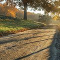 Back Road Morning Print by Bill  Wakeley