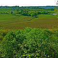 Baker Bluff Overlook at MIle 405 on Natchez Trace Parkway-TN Print by Ruth Hager
