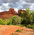 Balance at Cathedral Rock Poster by Carol Groenen