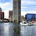 Baltimore Inner Harbor Marina - Generic Print by Olivier Le Queinec