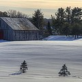 Barn in Snow in Color Poster by Donna Doherty