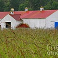 Barn with Blue Door Print by Art Block Collections