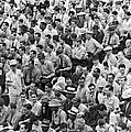 Baseball fans in the bleachers at Yankee Stadium. Print by Underwood Archives