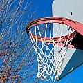 Basketball Net Print by Valentino Visentini