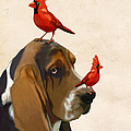 Basset Hound and Red Birds Print by Kelly McLaughlan
