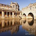 Bath Pulteney Bridge and Colonnade Bath Print by Colin and Linda McKie