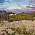 Beach Barn Poster by Bill  Wakeley