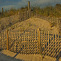Beach Fence Poster by Susan Candelario