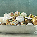 beach in a bowl Poster by Priska Wettstein