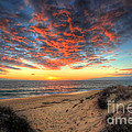Beachcombers Sunset Print by English Landscapes