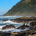 Beauty of Oregon Coast Print by Denise Darby