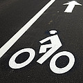 Bicycle Lane Print by Olivier Le Queinec
