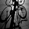 Bicycle shadow Print by Sheila Smart