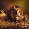 BIG DADDY LION Print by Robert Foster