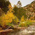 Big Thompson River 10 Print by Jon Burch Photography