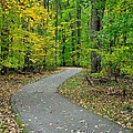 Bike Path Poster by Frozen in Time Fine Art Photography