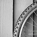 Bike Wheel Black and White Print by Tim Hester