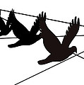 Birds on the Wire Print by Laura Pierre-Louis