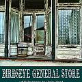 Birdseye General Store Print by Julie Dant