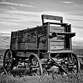 Black And White Covered Wagon Poster by Athena Mckinzie